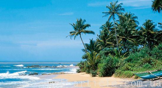 корорты Шри-Ланки
